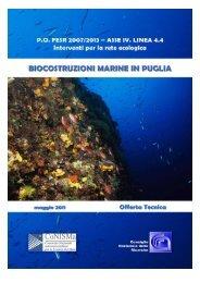 RelazioneBiocostruzioniFINALE (16-05-11).pdf