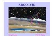 ARGO –YBJ - GLAST Gamma-Ray Large Area Space Telescope - Infn