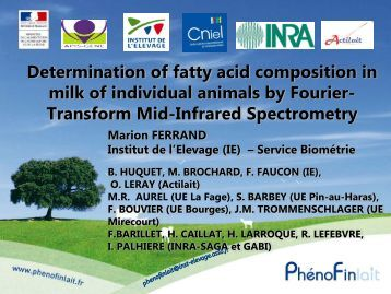 Determination of fatty acid composition in milk of individual ... - ICAR
