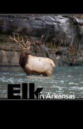 Elk in Arkansas - Arkansas Game and Fish Commission