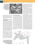 Sturm trotz Flaute - Limnogeology.ethz.ch - ETH Zürich - Seite 4