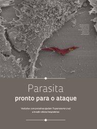 Parasita - Revista Pesquisa FAPESP