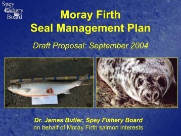 MF Seal Management Plan - Moray Firth Partnership