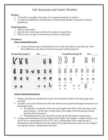 PDF] spectral analysis lab activity with answers (28 pages ...