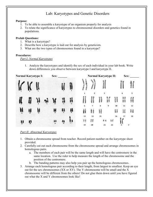 Lab Karyotypes And Genetic Disorders