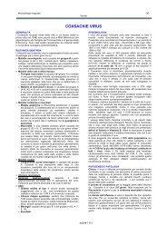 COXSACKIE VIRUS - Sezione di Microbiologia
