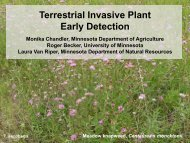 Terrestrial Invasive Plant Early Detection - Midwest Invasive Plant ...
