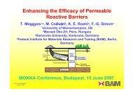 Enhancing the Efficacy of Permeable Reactive Barriers - MOKKKA.hu