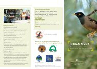 Indian Myna Bird Pamphlet - Coffs Harbour City Council