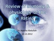 Review of anatomy & physiology of the Retina
