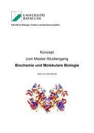 Konzept zum Master-Studiengang Biochemie und ... - BZMB