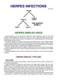 HERPES INFECTIONS - Medwords.com.au