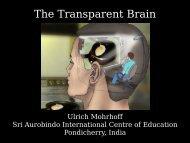 The Transparent Brain - This Quantum World