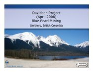 Davidson Project (April 2008) Blue Pearl Mining - Minerals North