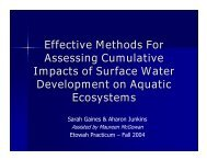 Effective Methods For Assessing Cumulative Impacts of Surface ...