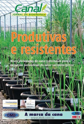 (51\252 Edi\347\343o_Governo.qxd) - Canal : O jornal da bioenergia
