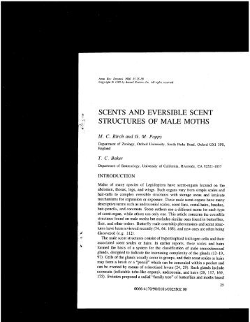 scents and eversible scent structures of male moths - Department of ...