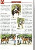 Züchterforum - Sportpferde Angerer - Seite 2