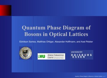 A.Pelster Bosons in optical lattices
