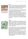QUALITÀ DELL'ARIA NELLE SCUOLE: UN DOVERE DI ... - Ispra - Page 4