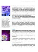 QUALITÀ DELL'ARIA NELLE SCUOLE: UN DOVERE DI ... - Ispra - Page 6