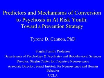 Predictors and Mechanisms for Conversion to Psychosis: Toward