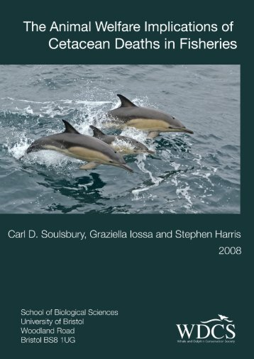 The Animal Welfare Implications of Cetacean Deaths in Fisheries