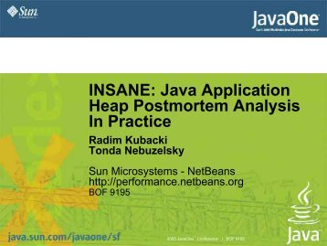 INSANE: Java Application Heap Postmortem Analysis In Practice
