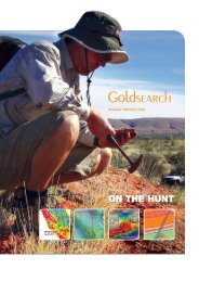 2008 Annual Report - Goldsearch