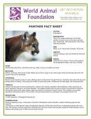 PANTHER FACT SHEET - World Animal Foundation
