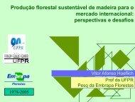 Produção florestal sustentável de madeira para o mercado ...