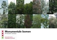 Monumentale bomen - Stadsdeel Zuidoost - Gemeente Amsterdam