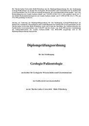 Prüfungsordnung für den Studiengang Diplom-Geologie ...