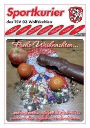 KFZ-Diagnose · HU/AU im Hause · Inspektion - TSV 03 Wolfskehlen