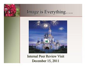 Revised IPR 2 12-15-11 - Reeths-Puffer Schools