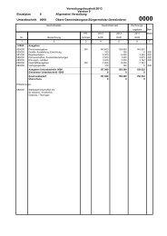 Verwaltungshaushalt 2013 Version 0 Einzelplan 0 ... - Neuenbürg