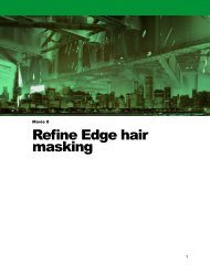 Refine Edge hair masking - Adobe Photoshop for Photographers