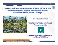 Current evidence on the role of wild birds in the ... - Middle East - OIE