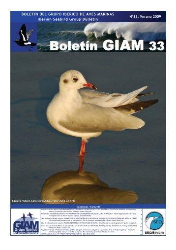 Boletín del Grupo Ibérico de Aves Marinas - SEO/BirdLife