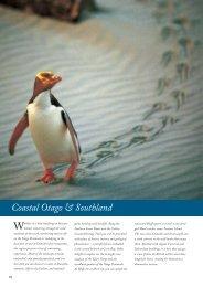 Stewart Island - Audley Travel