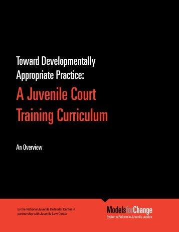 A Juvenile Court Training Curriculum - An Overview - National ...