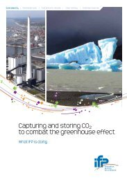 Capturing and storing CO 2 to combat the greenhouse effect - What ...
