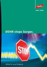 DEHN stops Surges.