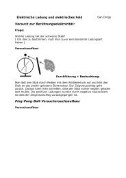 Elektrische Ladung und elektrisches Feld - Gymnasium Horkesgath