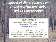 climate change impacts on the global forest sector