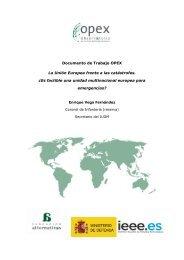 La Unión Europea frente a las catástrofes. - IEEE