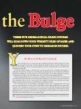 Battle of the Bulge - Warren, Carmack & Associates - Page 2