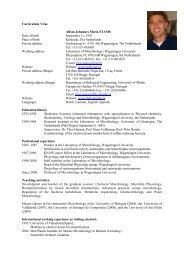 Curriculum Vitae Alfons Johannes Maria STAMS Date of birth ...