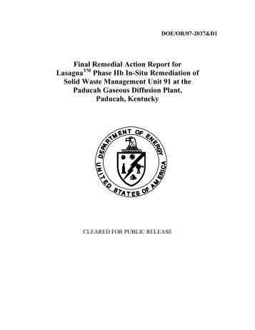 Final Remedial Action Report for Lasagna - Remediation ...