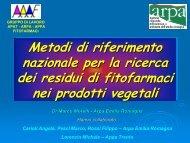 Relazione Marco Morelli ARPA Emilia Romagna - Agenzia ...